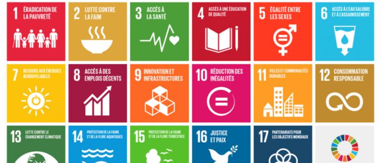 Article : L'Organisation des Nations Unies, les objectifs de développement durable et le monde de demain